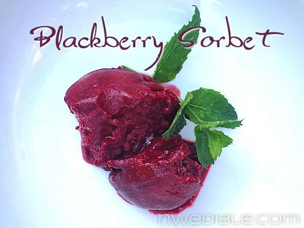 Fresh Blackberry Sorbet