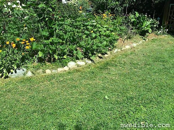 Eco_Lawn_4