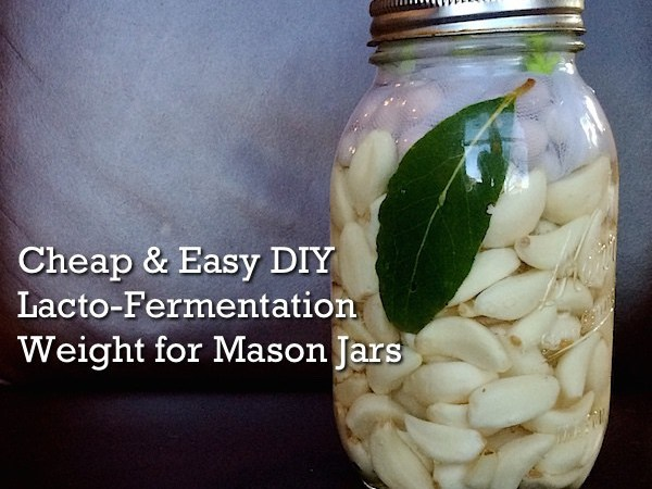 DIY Lacto-Fermentation Weight for Mason Jars