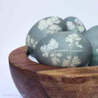 Sunprint-Dyed-Eggs82
