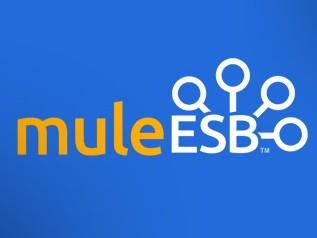 muleESB