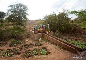 Irrigation Water Farm Kenya Africa Nyumbani Village sustainability
