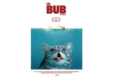 Tribeca film documents Internet cat video sensation