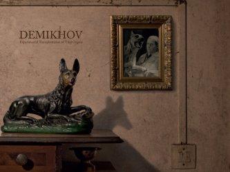 Demikhov