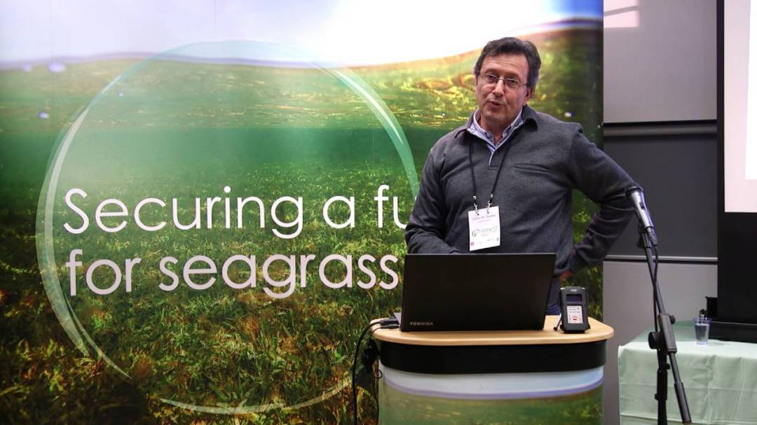 Seagrass Optimism: securing a future for seagrass meadows