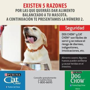 Pricesmart elsalvador promociones en alimento para perros