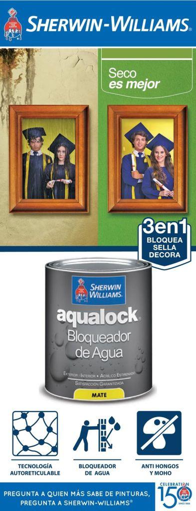 tecnologia-para-sellar-pintar-y-decorar-tus-paredes-contra-el-agua-lluvia