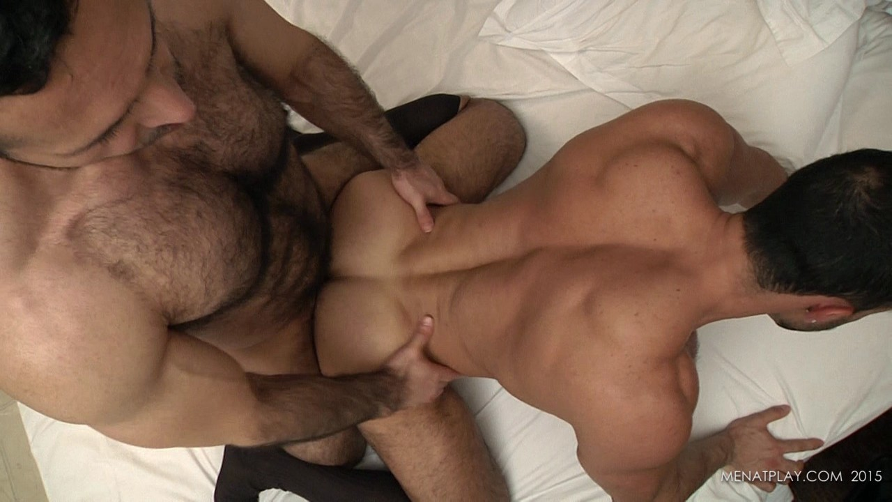 from Silas gay bear sex free videos