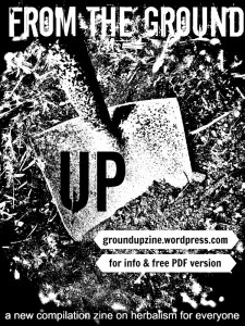 From the Ground Up zine