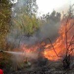Incendi a Strevi e lungo al strada per Oviglio