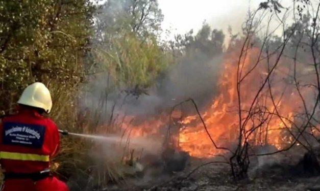 Doppio incendio di sterpaglie a Cassine