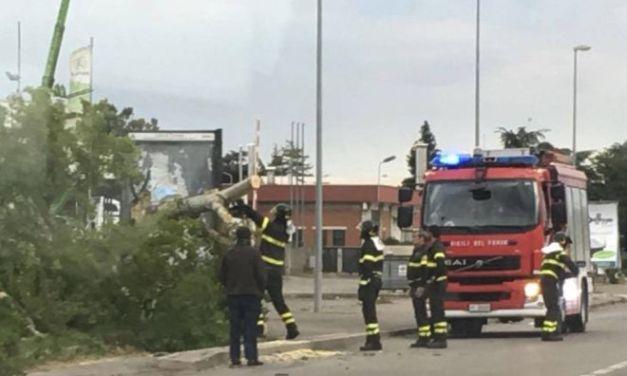 I Vigili del fuoco di Tortona recuperano una bombola di gas in mezzo alla strada