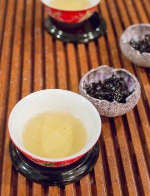 1213-te-oolong-tea-tasting-6