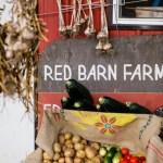 Washington Barn Wedding | Red Sparrow Photography