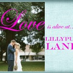 Lillyput Lane Jewelry