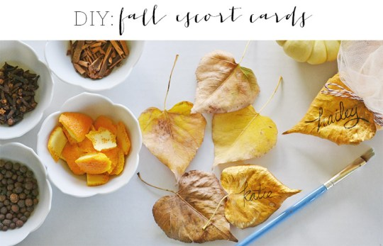 DIY Fall Escort Cards   Oh Lovely Day