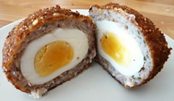 Scotch Egg / œuf dur enrobé de chair à saucisse et pané