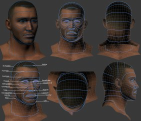 Facial Landmarks & Topology