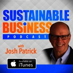 How to Get Traffic on Website: Sustainable Business Radio Podcast
