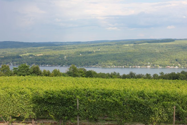 The view from Dr. Konstantin Frank Winery