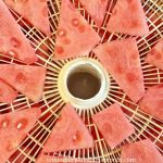 How to Dehydrate Watermelon – How to Make Watermelon Candy