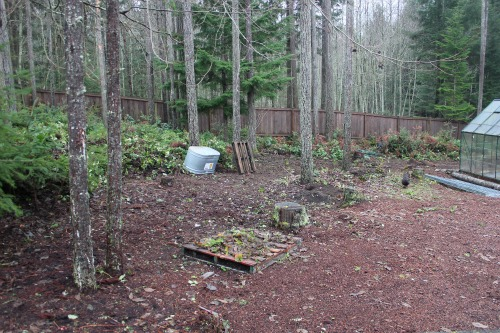 wooded garden setting