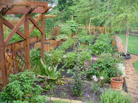 amazing garden photos florida