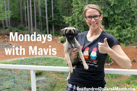 mondays with mavis