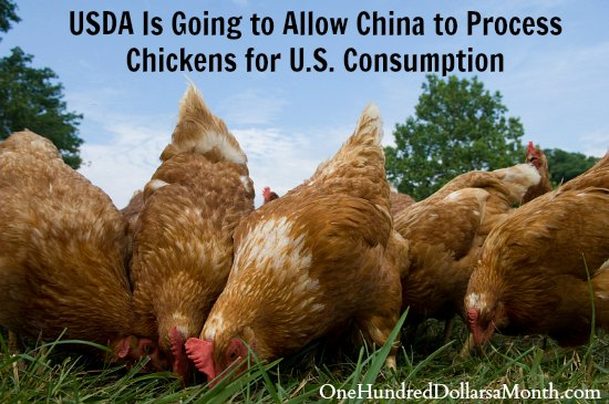 USDA Is Going to Allow China to Process Chickens for U.S. Consumption