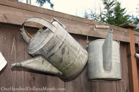 galvanized watering cans old vintage