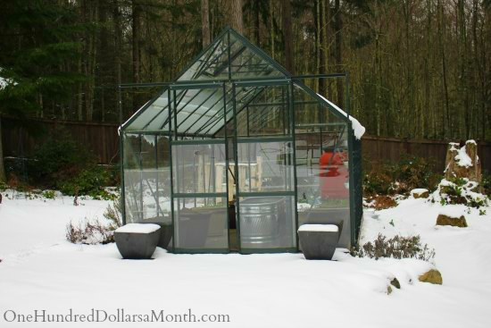 winter greenhouse snow