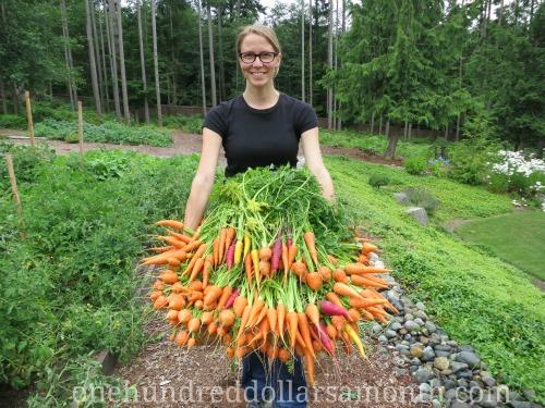 mavis-garden-blog3