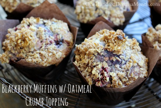 Blackberry Muffins with Oatmeal Crumb Topping