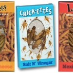 Would You Eat Bugs…by Choice?