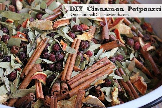 Make-Your-Own-Cinnamon-Potpourri4