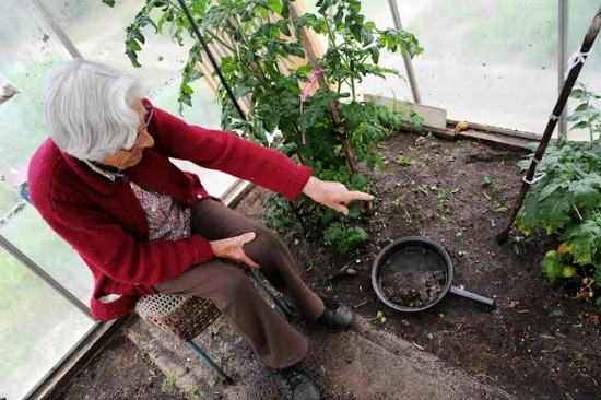 aunt ruby in the garden