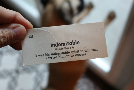indomitable
