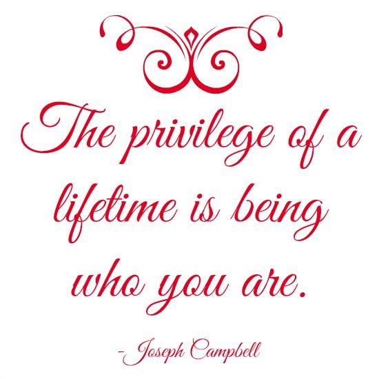 quotes - the privilege