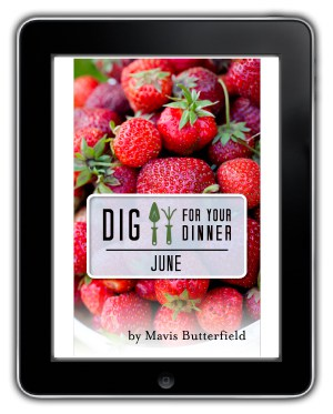 june ebook mavis butterfield