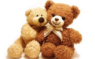 Happy Teddy Day!