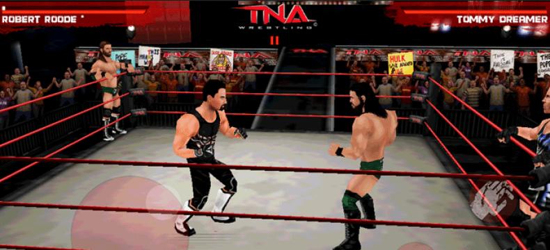 Wrestling fighting games