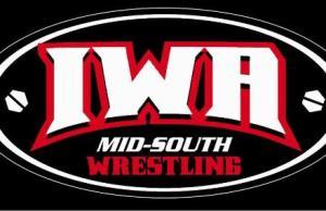 iwa-logo(5)
