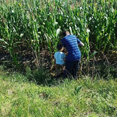 Explaining where sweet corn comes from... #holidays #summertime #france #bretagne