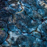 Blue Moon Soil Abstract Texture Photography Photo Ooaworld