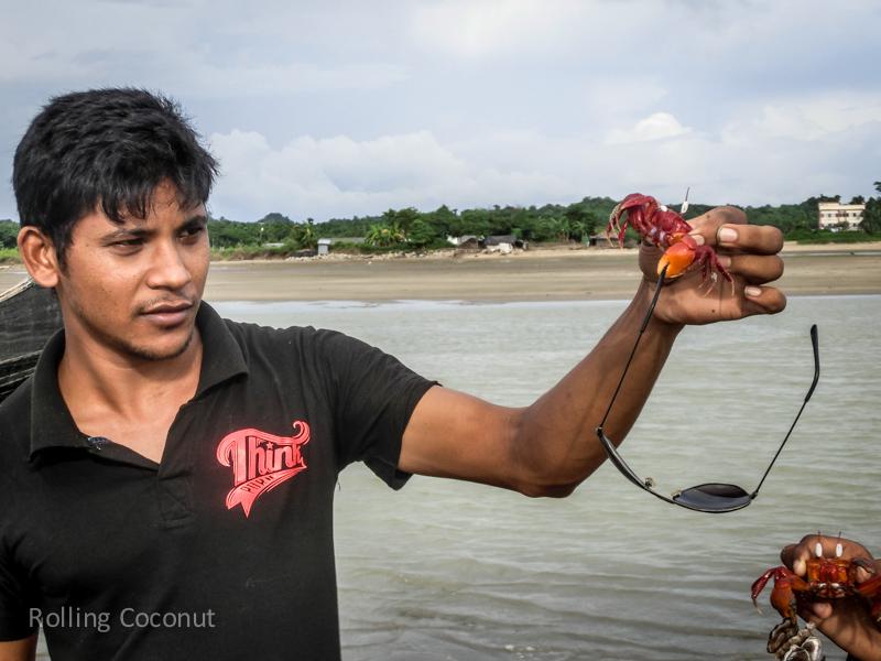 Bangladesh Cox's Bazar Inani Beach Crabs Sunglasses ooaworld Rolling Coconut Photo Ooaworld