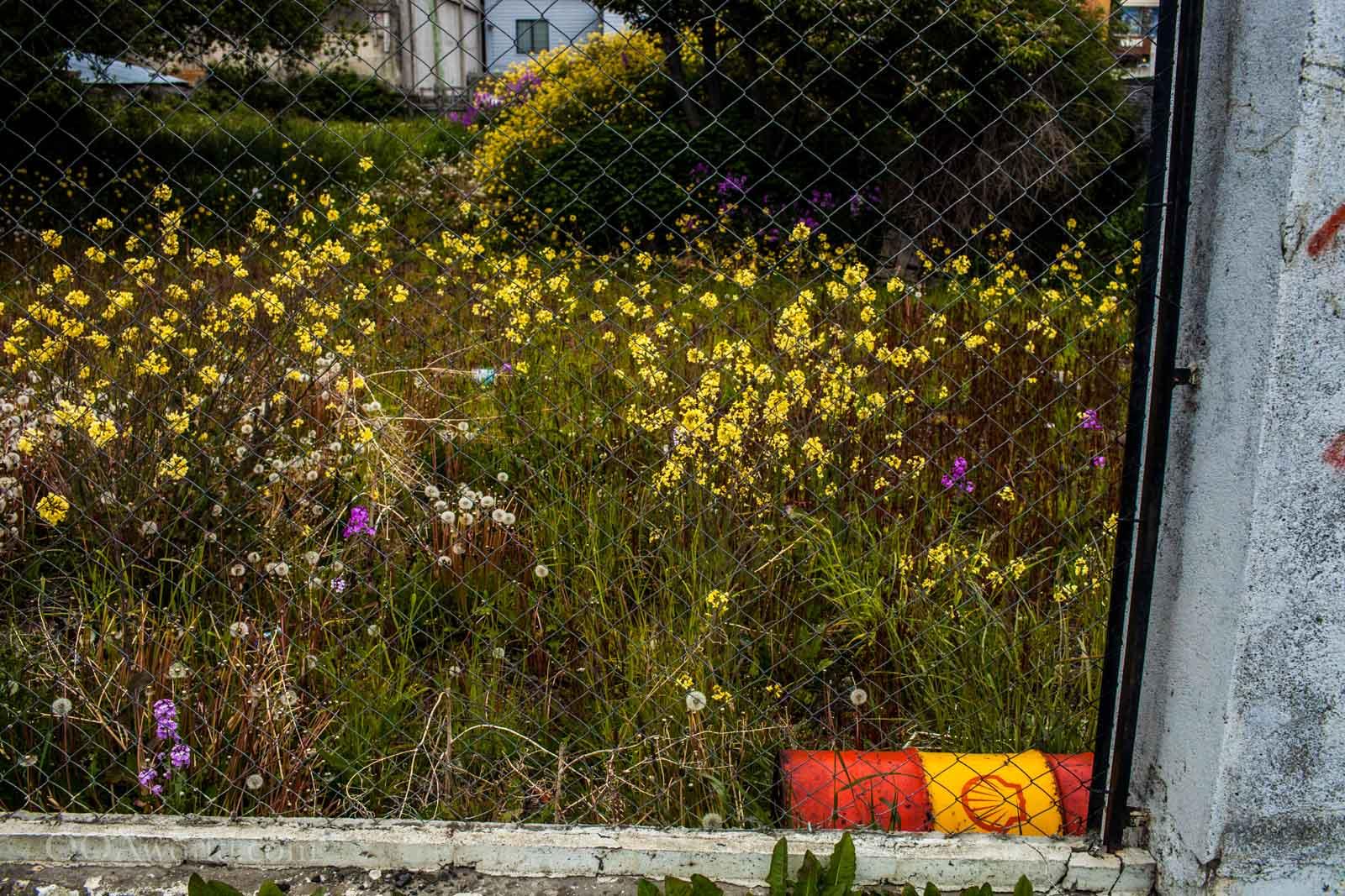 Ushuaia Oil Meets Nature Photo Ooaworld