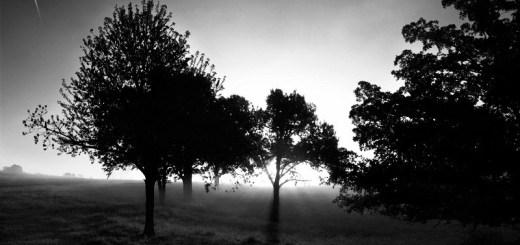 Photos Arkansas Branson Missouri dawn by the ozarks USA road trip photo ooaworld