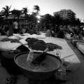 early-evening-miami-club