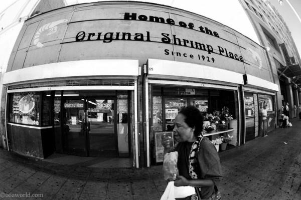 los angeles original shrimp USA road trip photo ooaworld