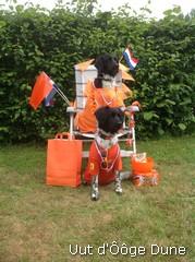 13-06-2014 wij zijn er klaar voor HUP HOLLAND!!